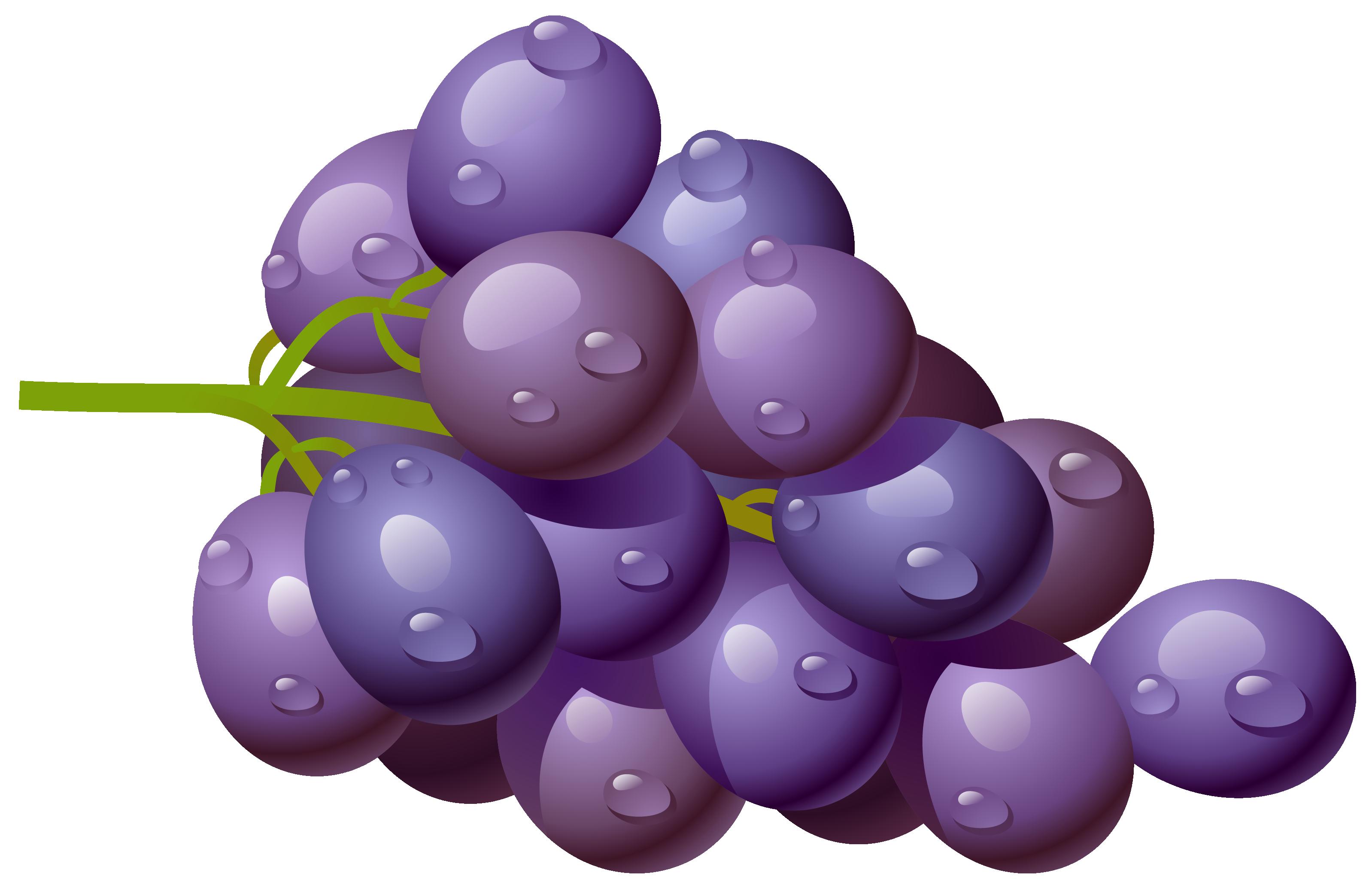 Grape PNG Clipart Picture Clip art, Grapes, Food clipart