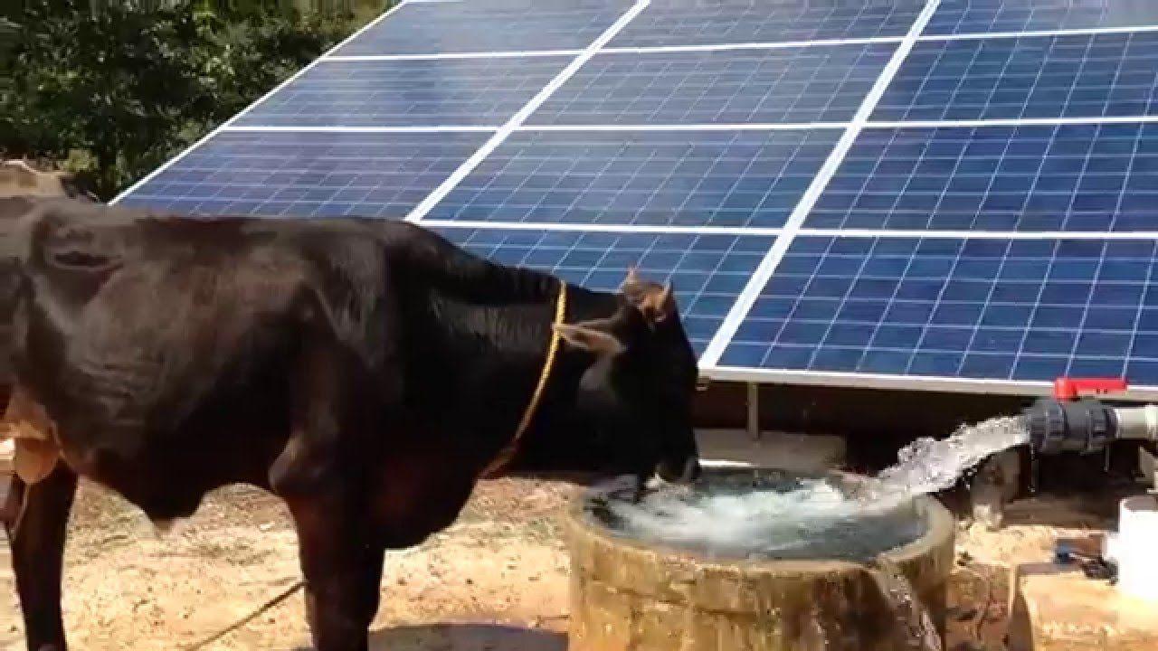 Bombeo Solar Hasta 50 Hp Bombeo Solar Energia Solar Agua