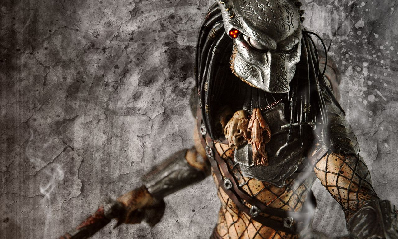 Wolf Warrior Download Free Download Alien Predator Girl