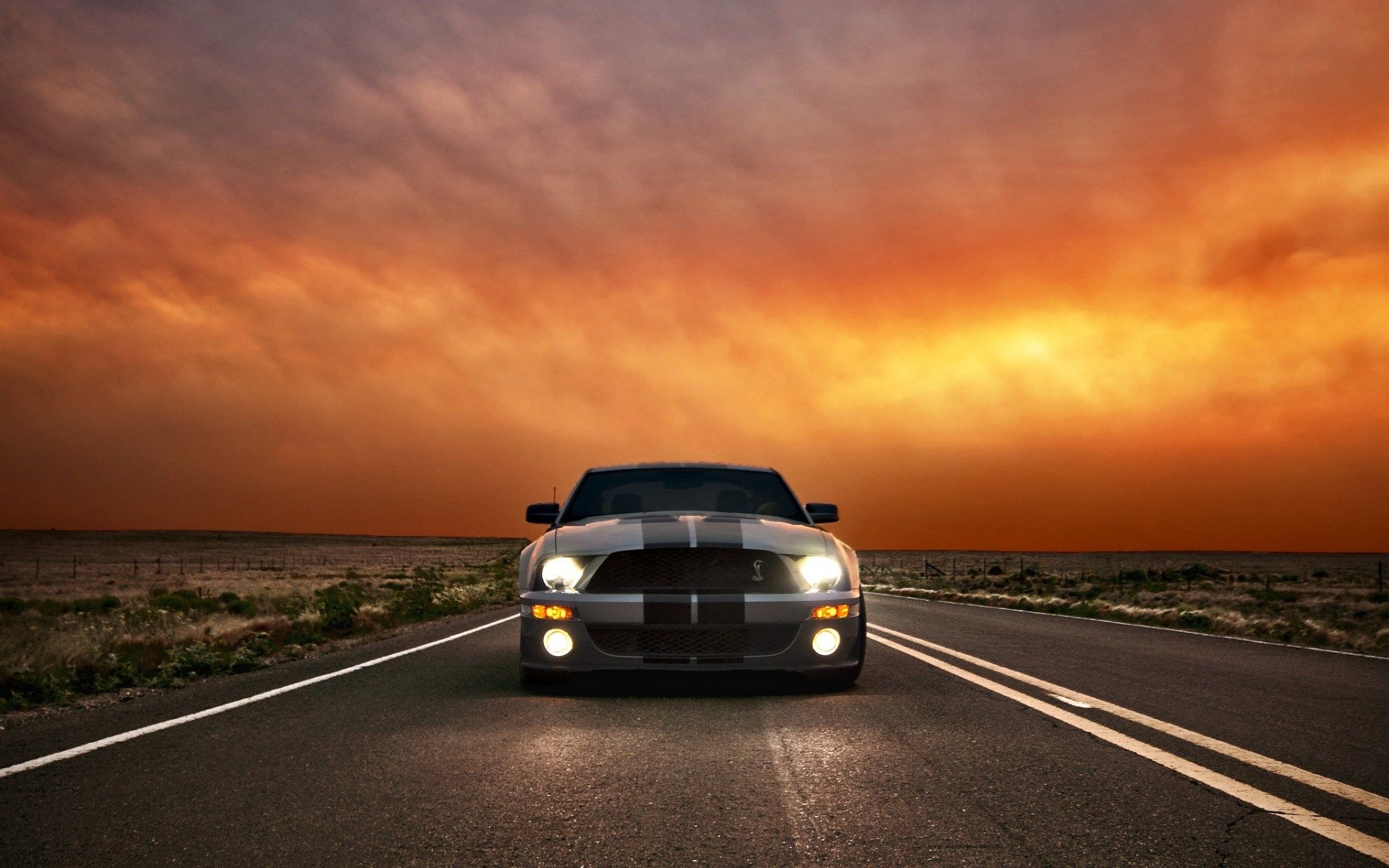 Ford Mustang Shelby Cobra Gt 500 Wallpaper For Mac Computers Ed Peacock 2017 03 08 Ford Mustang Shelby Cobra Mustang Shelby Cobra Ford Mustang
