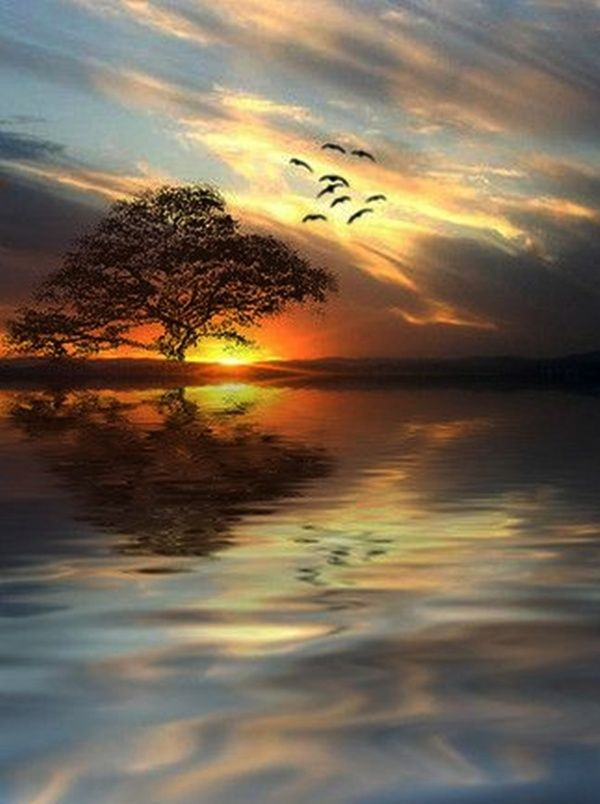 Nature's conformation ~