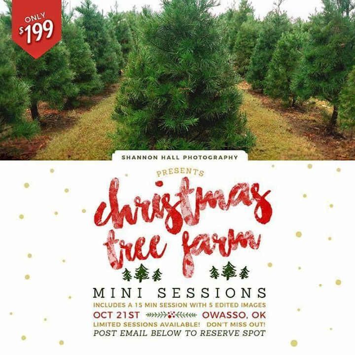 Less Than 2 Weeks Until The Big Day And Only A Few Spots Are Left Don T Miss Out Tree Farm Mini Session Christmas Tree Farm Mini Session Christmas Tree Farm