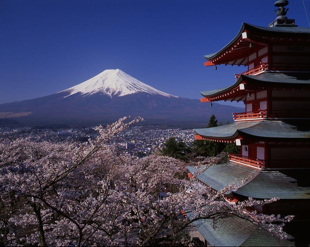 Mt. Fuji-san!
