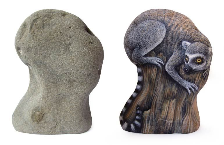 A sea rock transformed in a lemur katta | The Art of Roberto Rizzo | www.robertorizzo.com