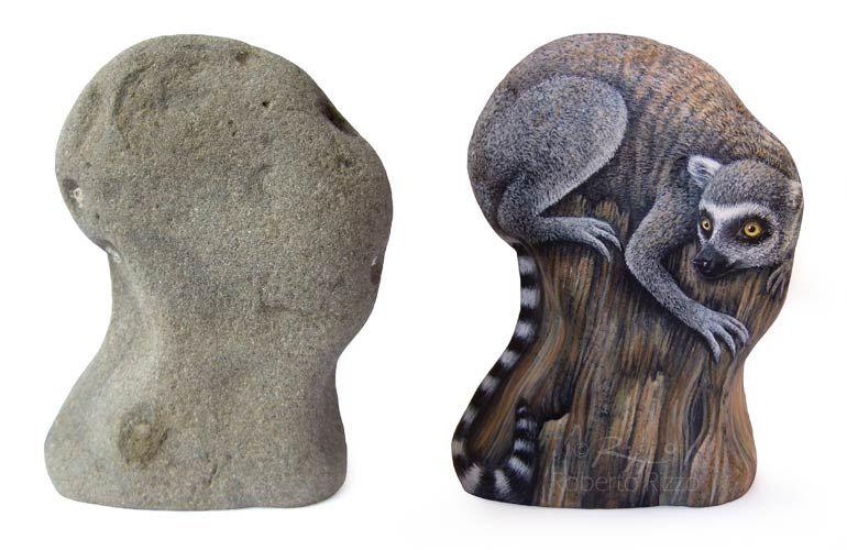 A sea rock transformed in a lemur katta | The Art of Roberto Rizzo | www.robertorizzo.com