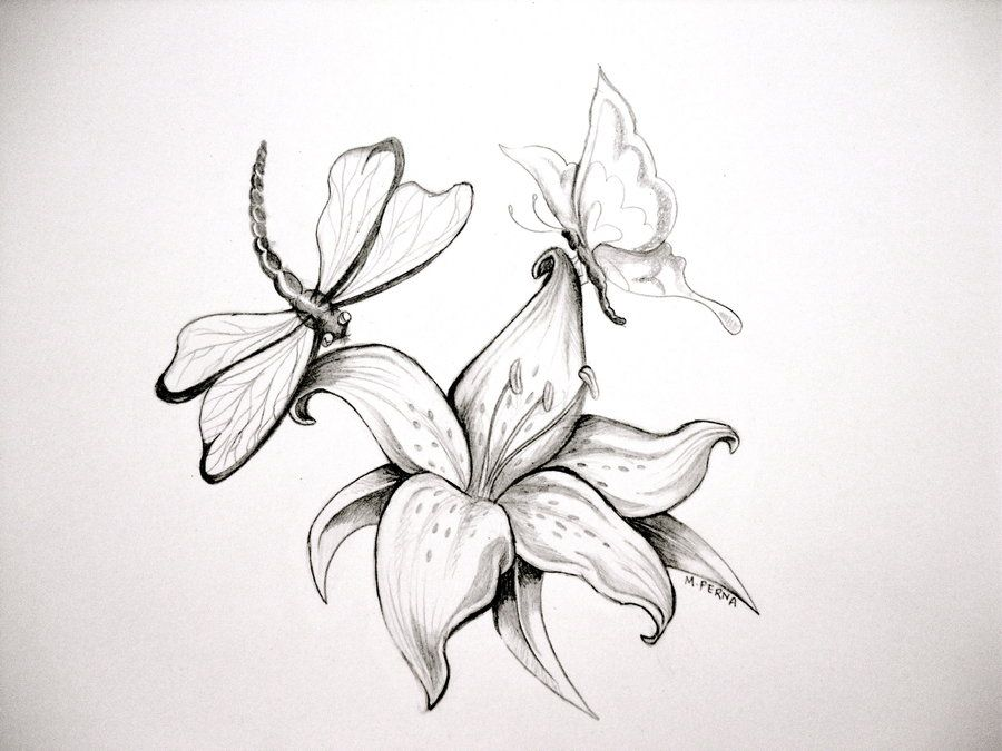 Water Lily Drawing Tattoo