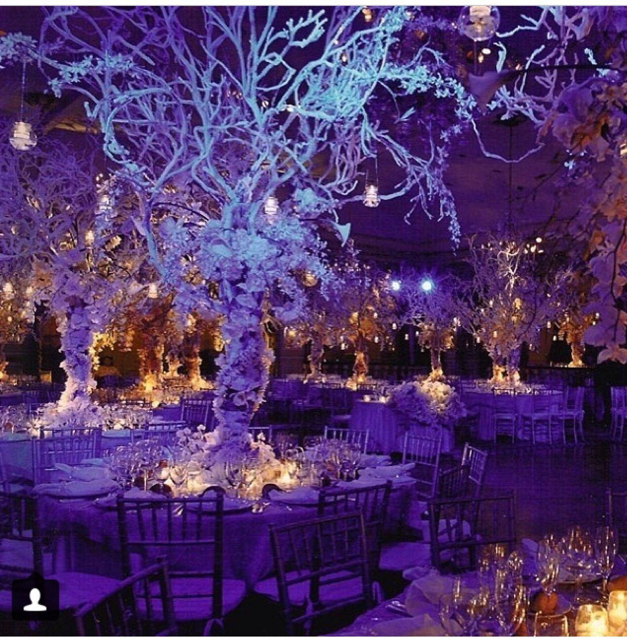 Enchanted forest themed wedding. Very majestic! | In-Venue Wedding ...