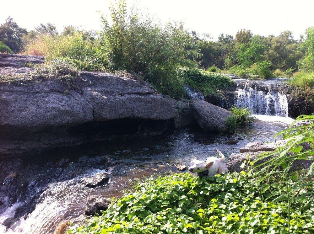 8 Easy Hikes In Arizona To Take This Fall