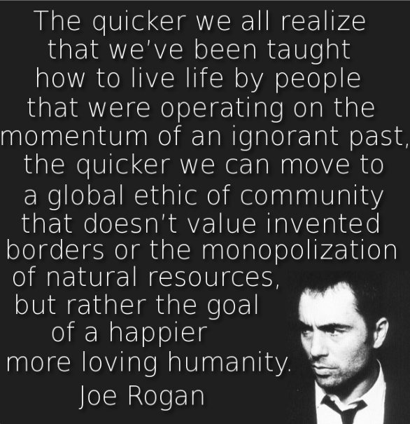 Reddit The Front Page Of The Internet Joe Rogan Quotes Quotes To Live By Quotes
