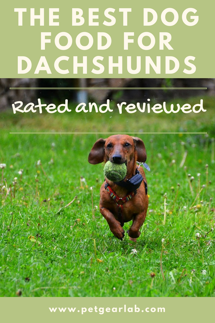 The Best Dog Food For Dachshunds Reviewed Our Top Picks Best Dog Food Dog Food Recipes Dachshund Pets
