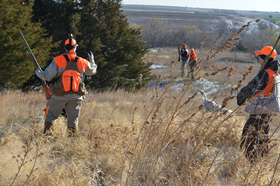 What to hunt in Kansas Kansas hunting, Hunt, Hunting