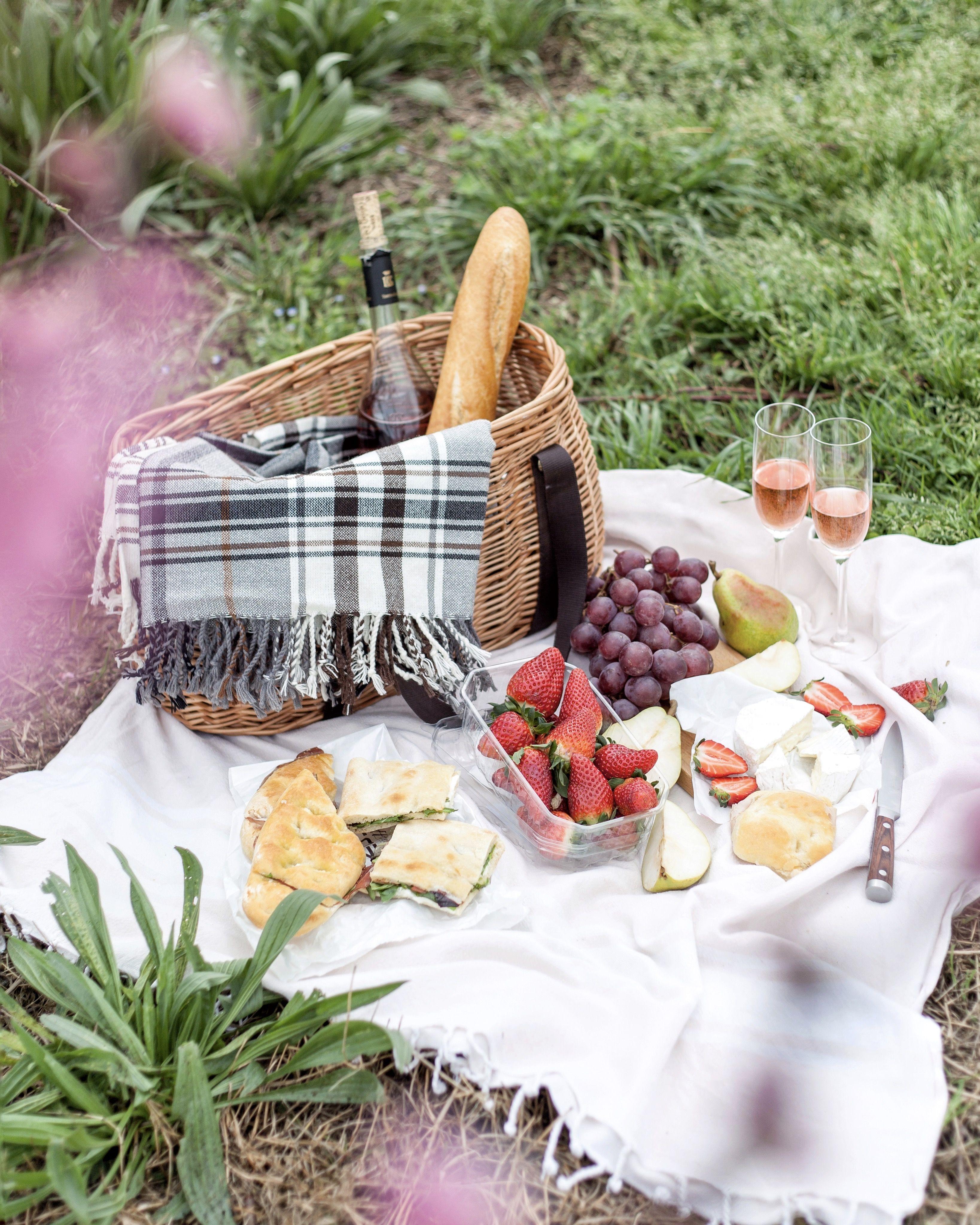 картинки пикник на траве полотенца играют большую