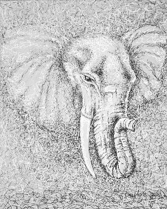 Elephant Coloring Book Page Adult Pages