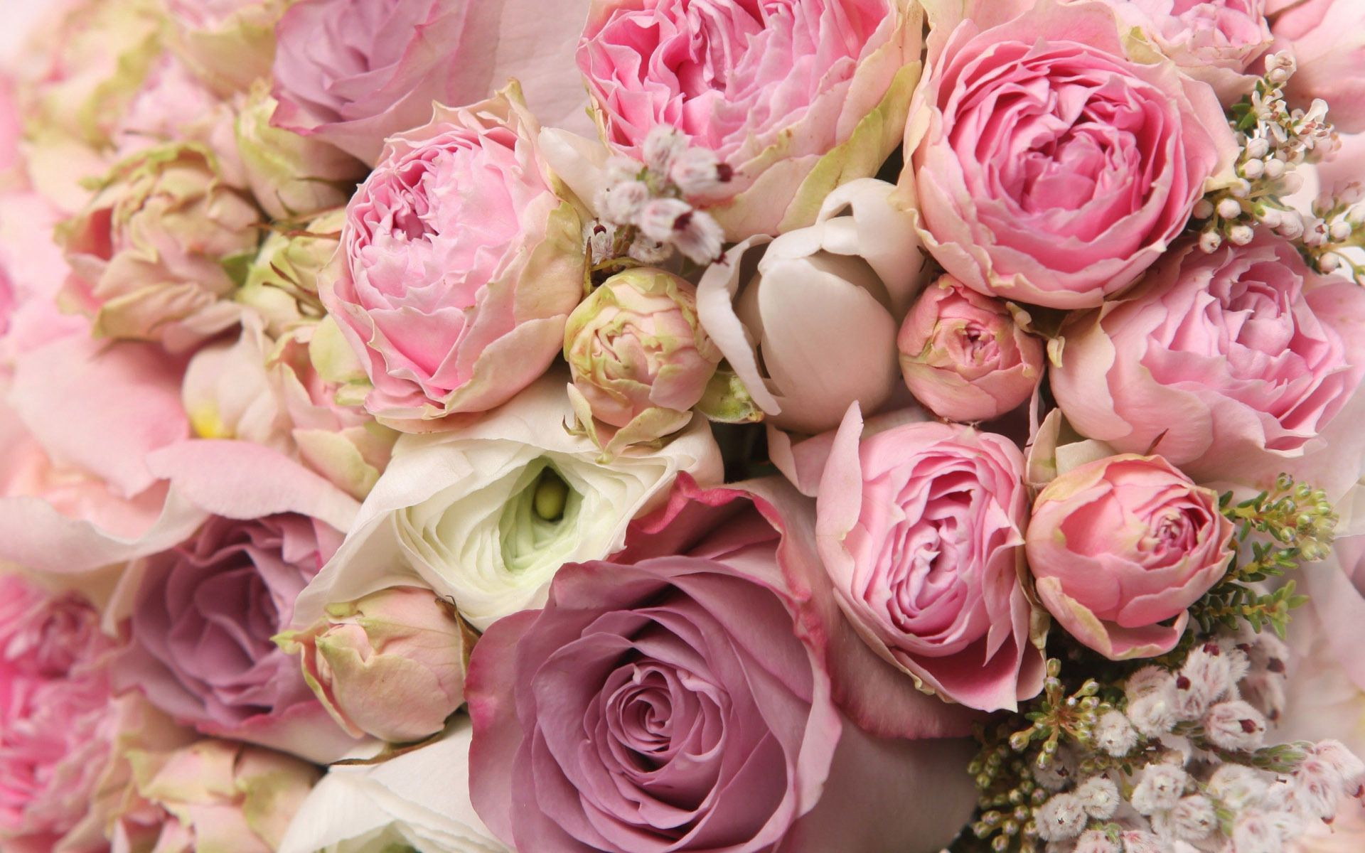 Roses And Peonies Bouquet Wallpaper Peony Wallpaper Pink Peonies Wallpaper Romantic Flowers Roses