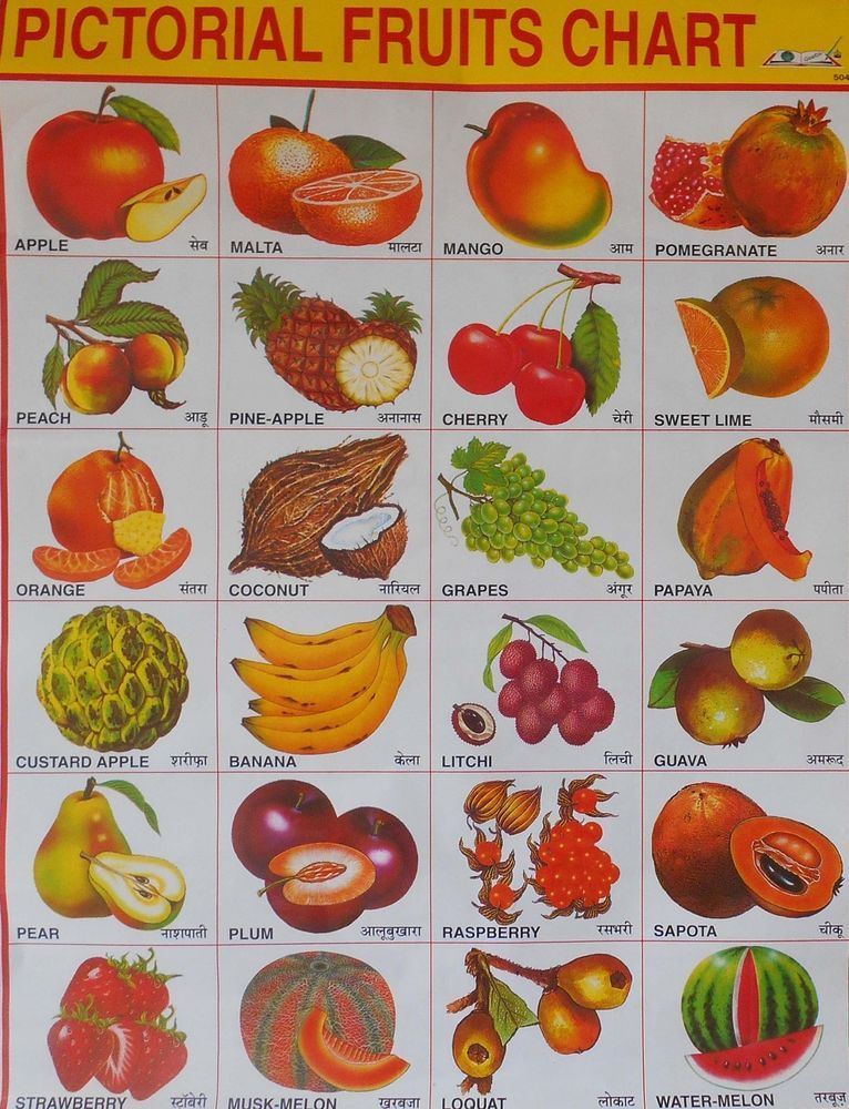 School chart print of pictorial fruits in hindi  english sc also rh pinterest