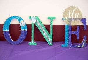 Peacock Theme Letters   First Birthday Lake County IL Photographer