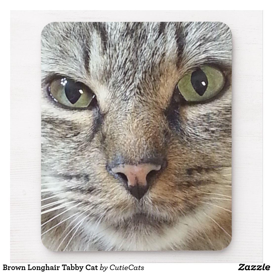 Brown Longhair Tabby Cat Mouse Pad Zazzle Com Tabby Cat Tabby Cat Pictures Orange Tabby Cats
