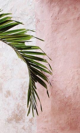 Zachte pastel kleuren met groen. Sowieso super tropisch! What's not to love? // via Sezane