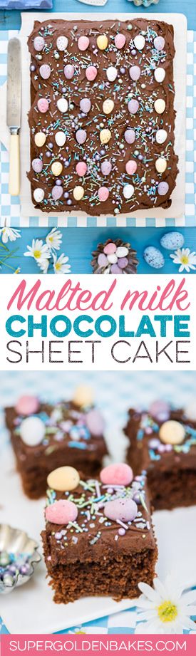 Malted milk chocolate sheet cake – with a vegan option. Perfect for birthdays and celebrations, delicious and super easy!