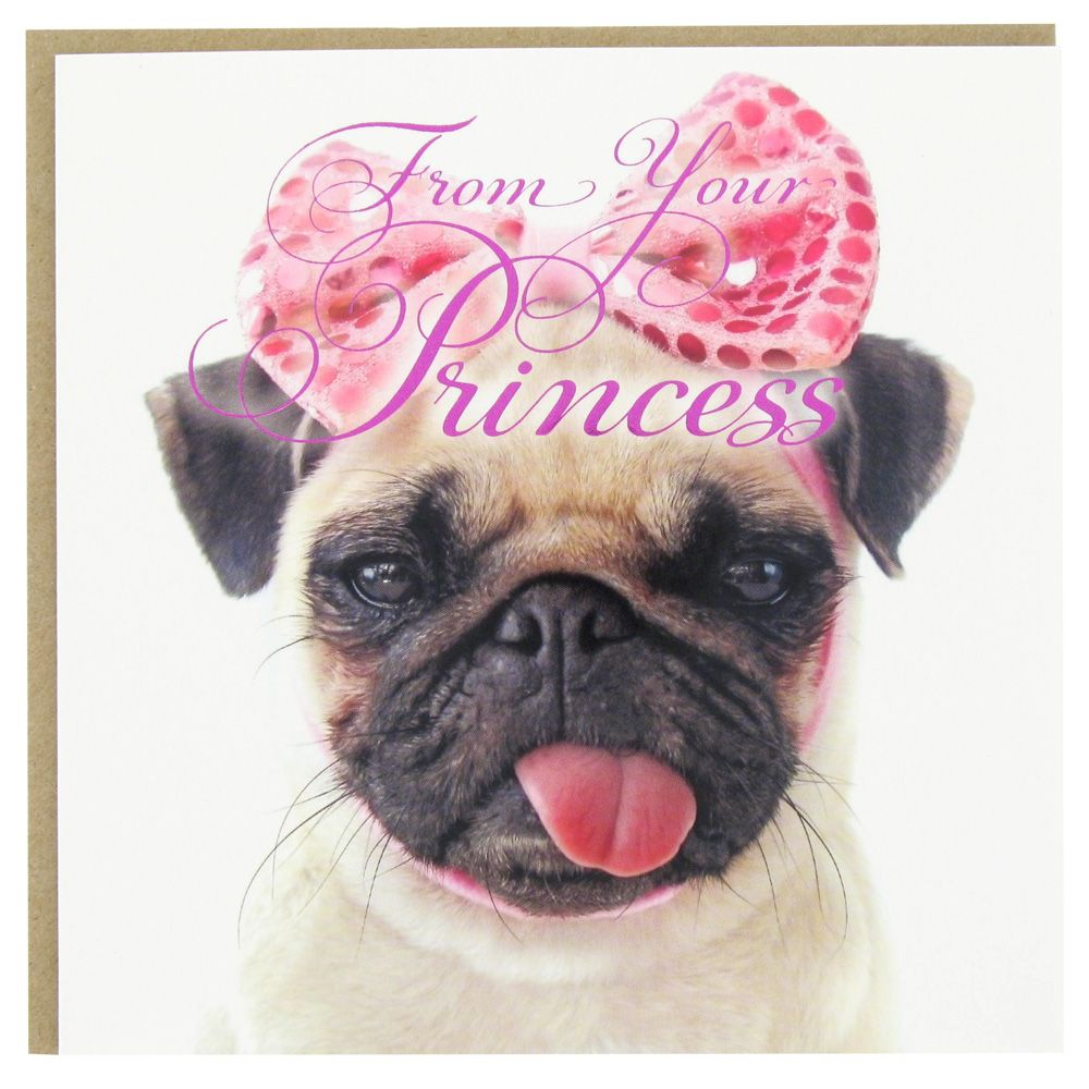 Pug Princess Father S Day Card From Paperchase De Todo Pinterest