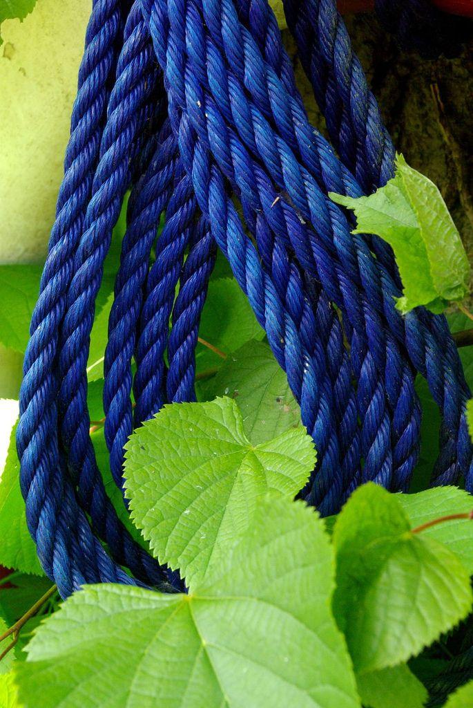 Pin Von Giovanna 2 Auf Blue And Green Blau Grun Grun Blau