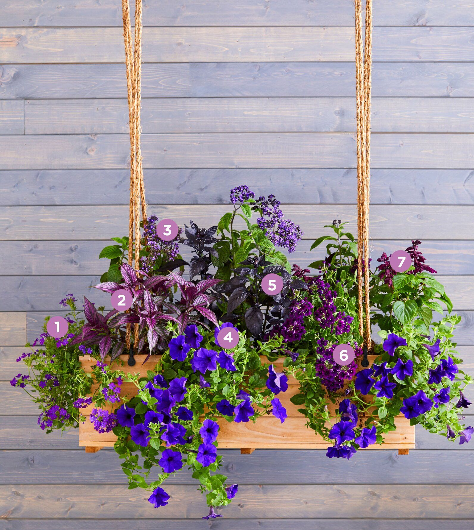30 bright and beautiful window box planters in 2020 with