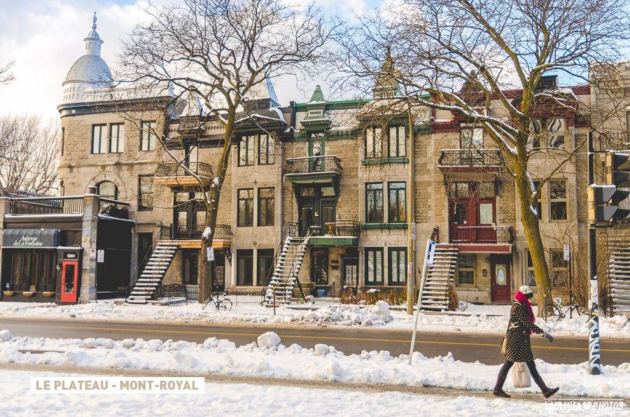 Dans quel quartier habiter à Montréal ? (avec images