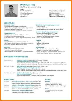 9 Cv Chef De Projet Informatique Format Lettre Projet Informatique Informatique Format Lettre
