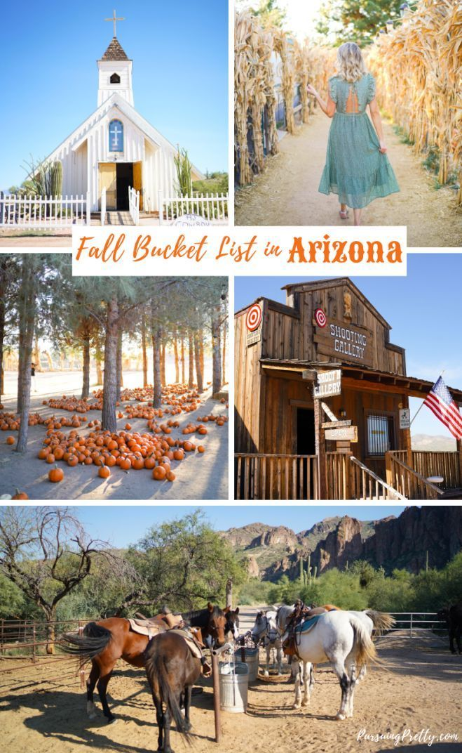 Things to do in Arizona: Fall in Love With Mesa | Pursuing Pretty #fallbucketlist
