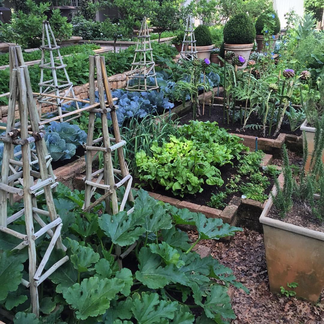 Vegetable garden with covered walkways - Sasha Joubert P Instagram Christopher Greig S Most Perfect Vegetable Garden At Beechwood