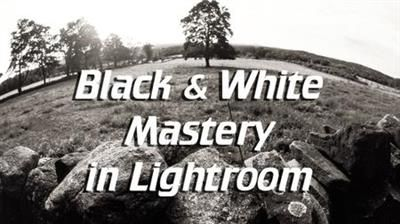 Download link:  megafilesfactory.com/444162c048d9368b/Black & White Mastery in Lightroom