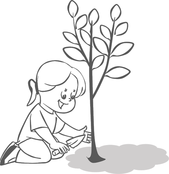 Planting Trees Clipart Book Clip Art Art Drawings Simple Free Coloring Pictures