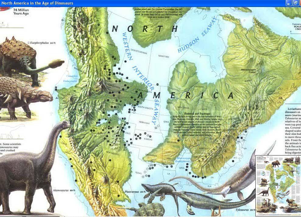 North America | Randalls   Paleontology | Pinterest | Prehistoric