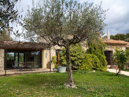 Le jardin de la location de vacances Mas à Le Castellet