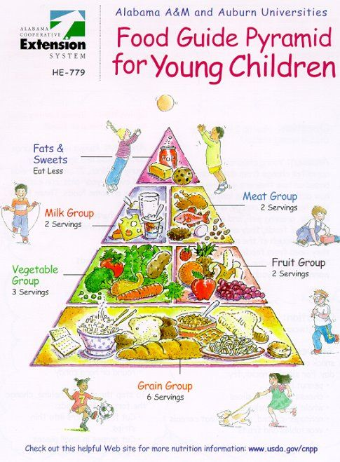 Food Pyramid for kids by Barb Struempler