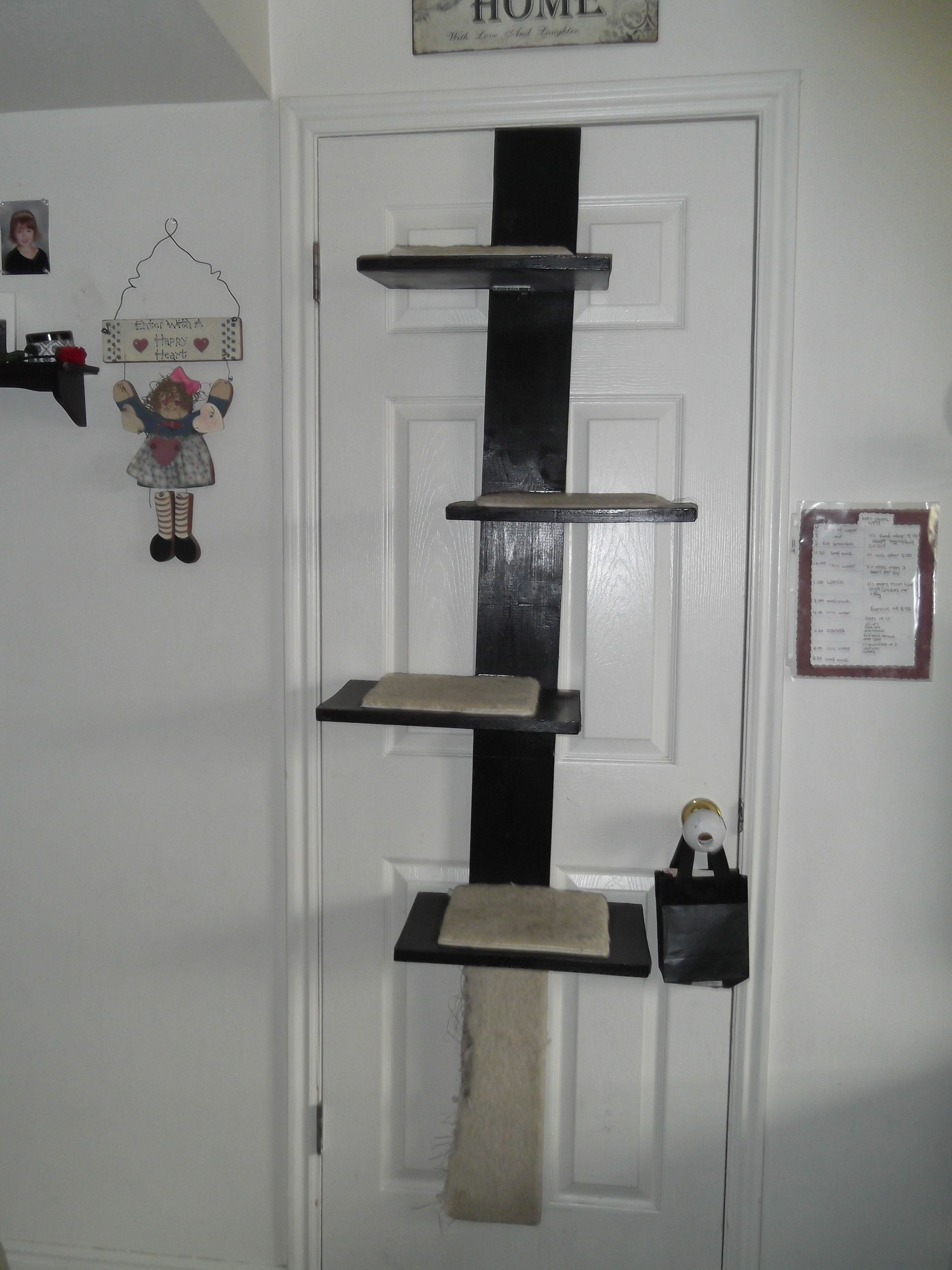 over door cat tree, cost me 45 to make. Made in 2011