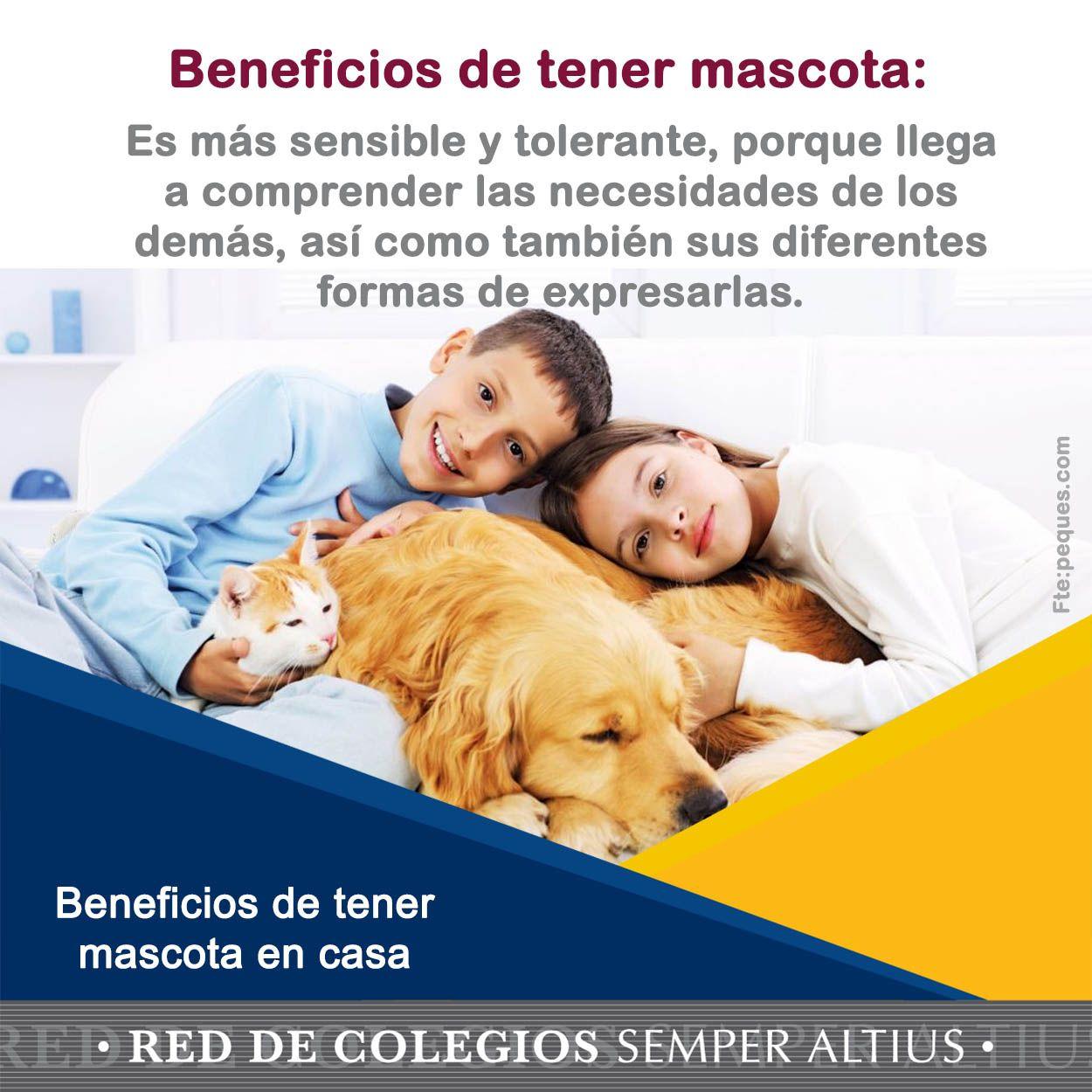Algunos beneficios por tener mascota en casa para los - Mascotas originales para tener en casa ...