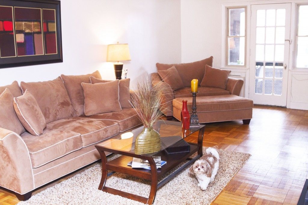 Living Room at Hempstead, Squirrel Hill