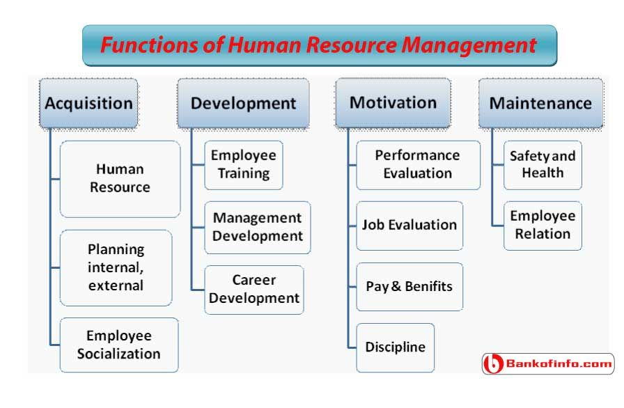20 Functions Of Human Resource Management Human Resource Management Human Resources Education Jobs