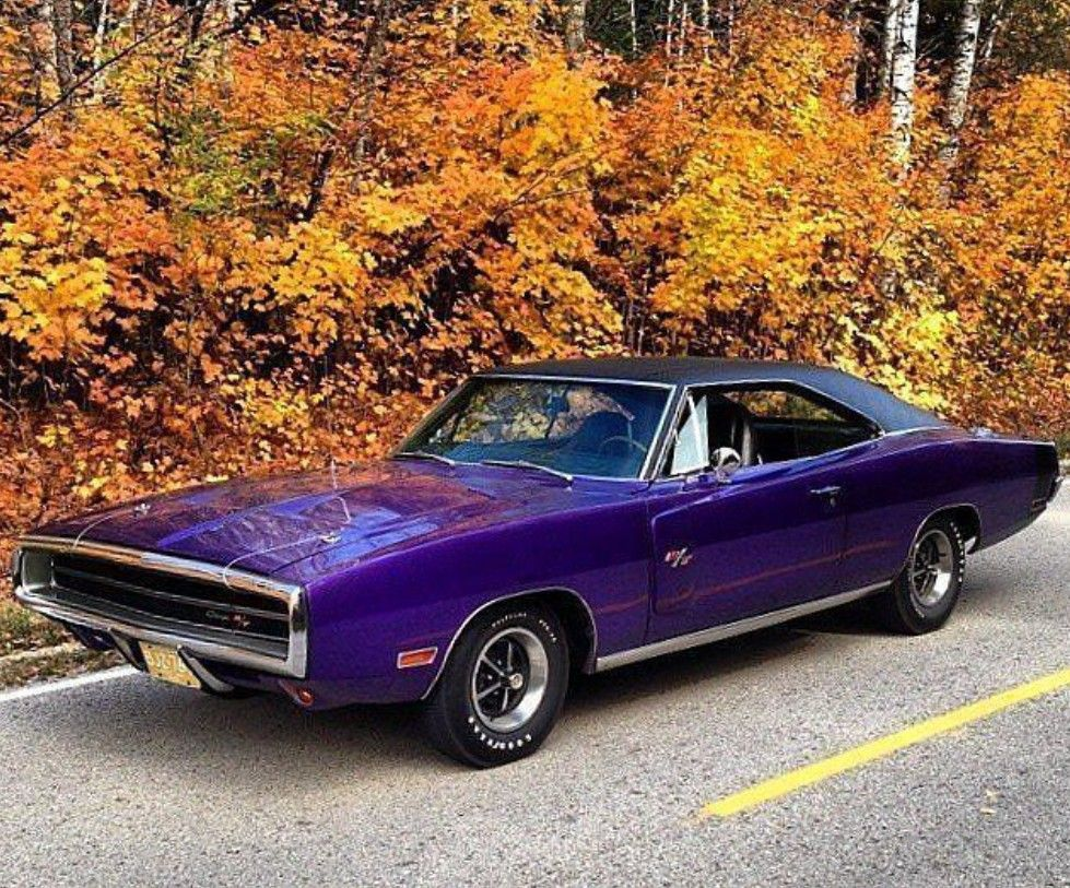1970 Dodge Charger R T Dodge Charger Classic Cars Dodge Muscle Cars