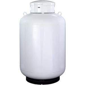 Worthington 420 Lb Empty Propane Tank 309295 At The Home Depot Propane Tank Propane Bottle