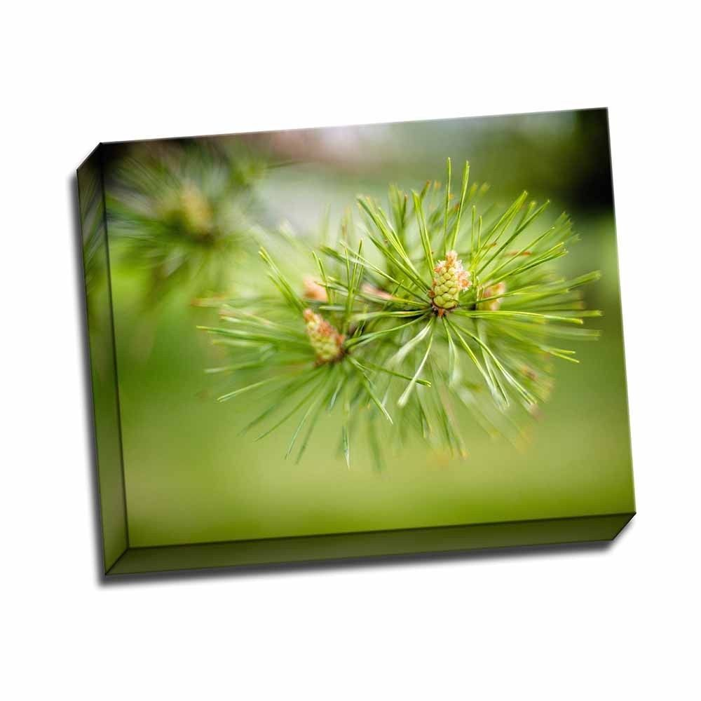 Picture It on Canvas ' Needles Iii' 20 x 16 Wrapped Canvas Wall Art, Green
