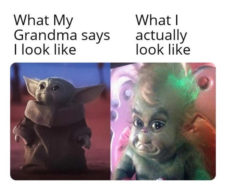 Pin By Jenniee Cinate On My Funnies Funny Relatable Memes Funny Memes Yoda Meme