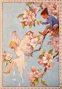Apple Blossom - Flower Fairies book by Marion St John Webb, 1923