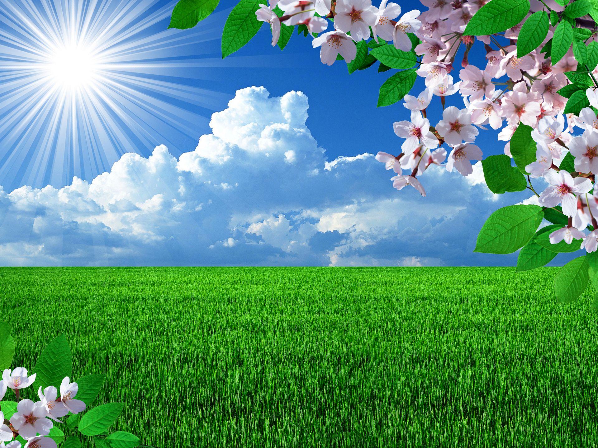 Free Spring Desktop Wallpapers Backgrounds Wallpapersafari Beautiful Nature Spring Spring Desktop Wallpaper