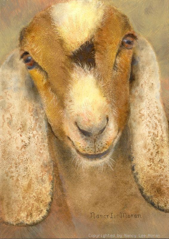 So Sweet Goat Art Goat Paintings Animal Paintings
