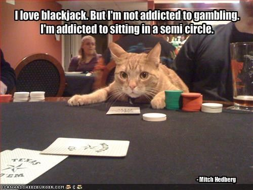 Funny sports betting quotes funny what is odds on in betting