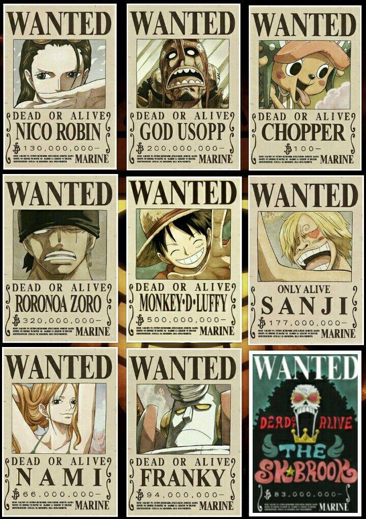 Carteles De Se Busca One Piece One Piece One Piece