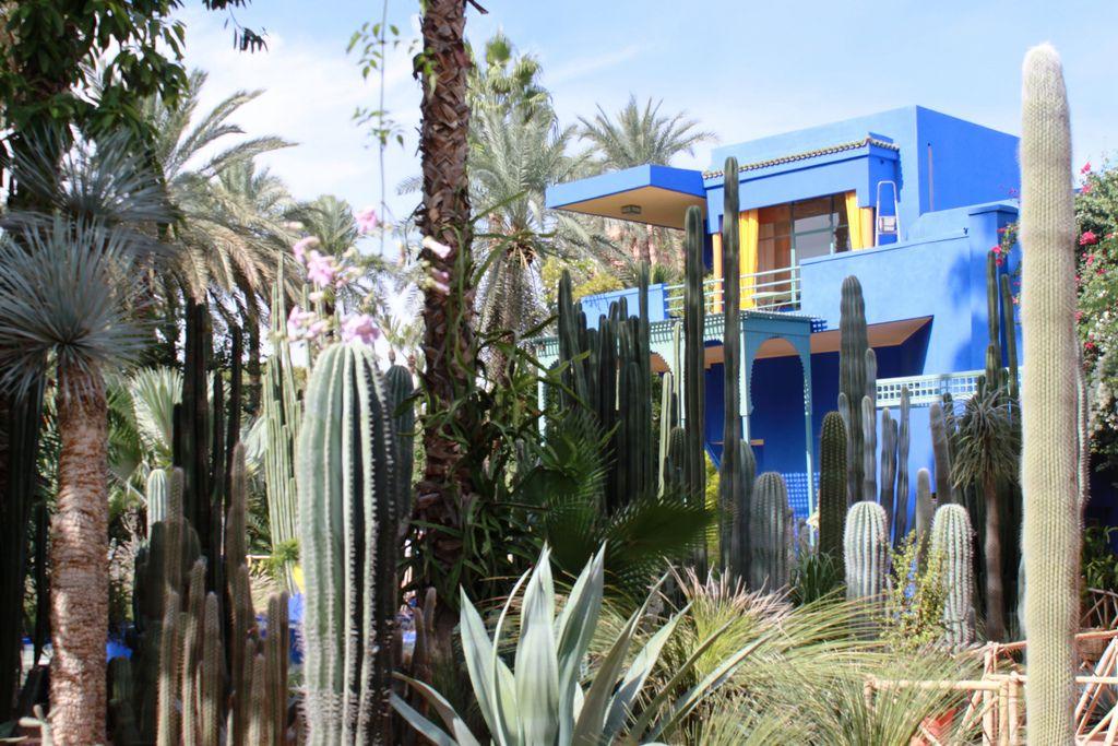 Jardin marjorelle museums in marrakech things to do in