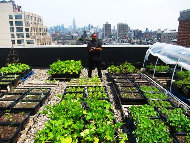 Incroyable Growing It Locally On The Rooftop Garden Of The Soho Grand Hotel, NYC  Pinned By